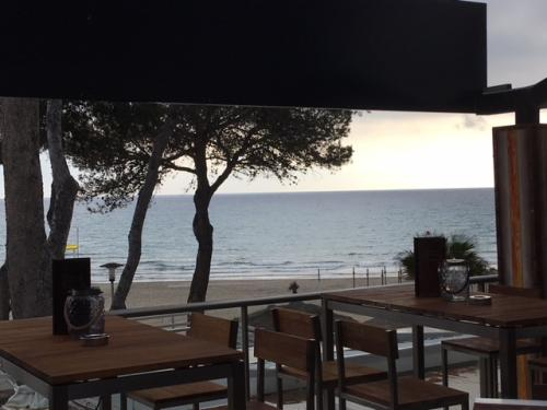 Maha Lounge Terrasse